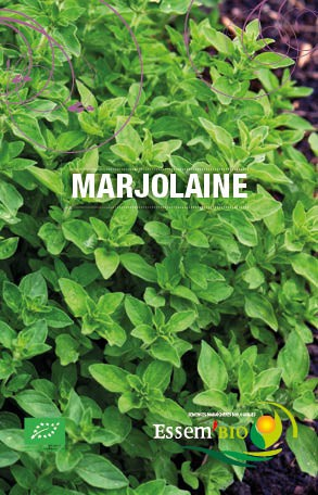 Graines Marjolaine bio – Essembio