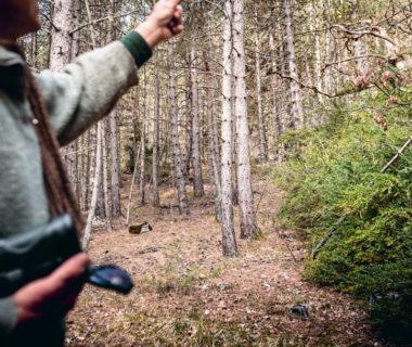 Acheter des forêts pour les protéger | 4 saisons n°244 5