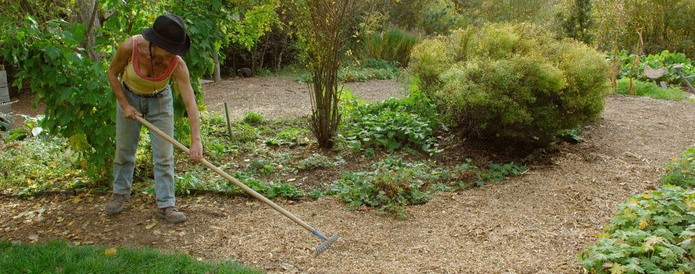 Expérimentation BFR: jardiniers, raccrochez-vous aux branches ! 1
