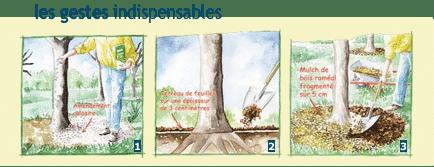 Expérimentation BFR: jardiniers, raccrochez-vous aux branches ! 3