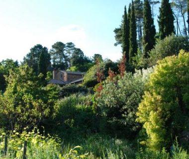 Jardin-paysage de Louisa Jones : zoom sur le plan de gestion | 4 saisons n°247