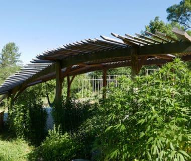 Une pergola dans les jardins du Centre Terre vivante | 4 saisons n°243 2