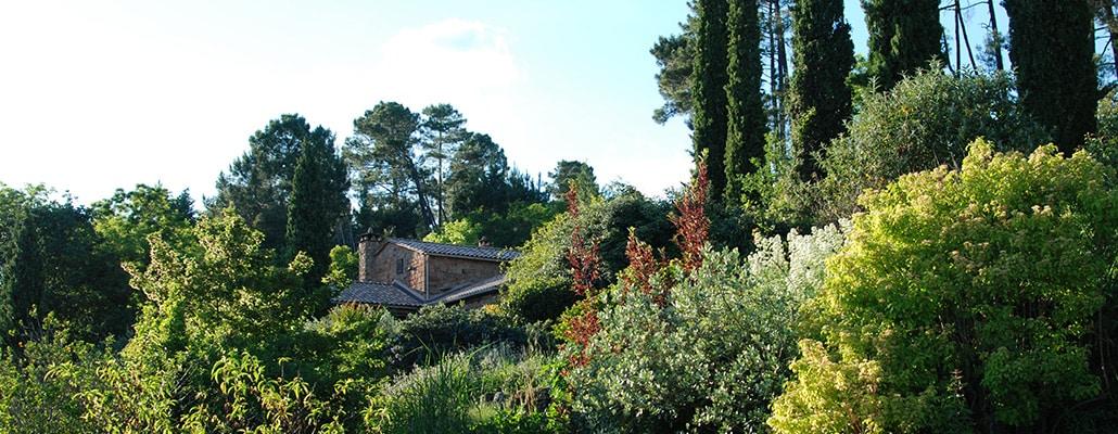 Jardin-paysage de Louisa Jones : zoom sur le plan de gestion | 4 saisons n°247 5