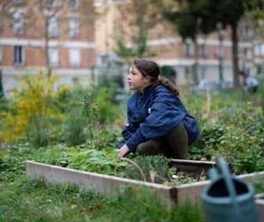 Un collège qui réinvente son jardin | 4 saisons n°241 1