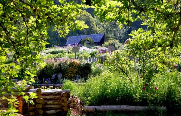 Jardins de Terre vivante en juin - O. Madhi