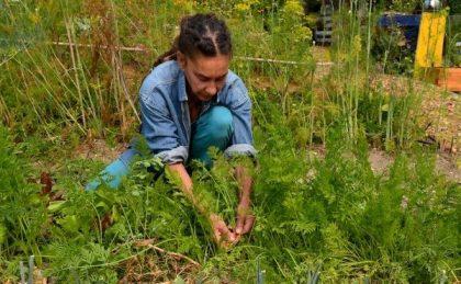 Geneviève au jardin