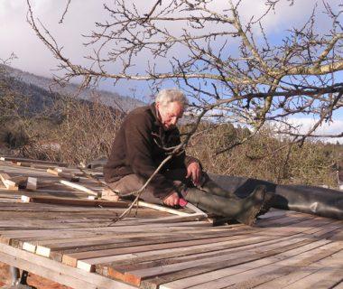 Un toit végétalisé pour le poulailler | 4 saisons n°229 4