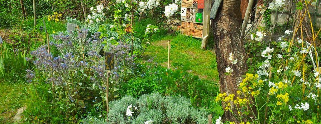 Bienvenue dans mon jardin au naturel, les 12 et 13 juin partout en France 1