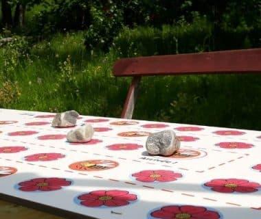 Table de jeux de l'oie