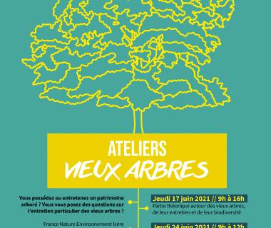 Ateliers gratuits autour de l'entretien des vieux arbres, le 17 juin 2021 | Ateliers en distanciel, sur le logiciel zoom