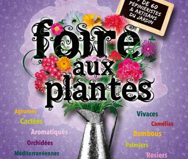 Foire aux plantes, le 26 septembre 2021 | Villeneuve sur Vère (81)