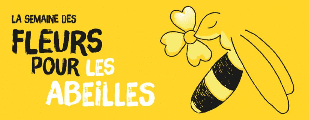 Des fleurs pour les abeilles : semez des graines en juin pour aider les pollinisateurs !