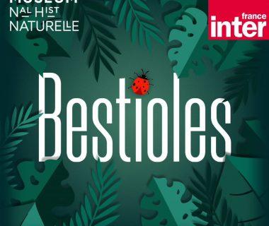 Les Bestioles à l'honneur dans le nouveau podcast jeunesse de France Inter 1