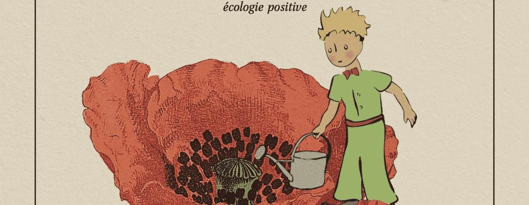 Agir pour une écologie positive avec le Petit Prince au château de la Bourdaisière