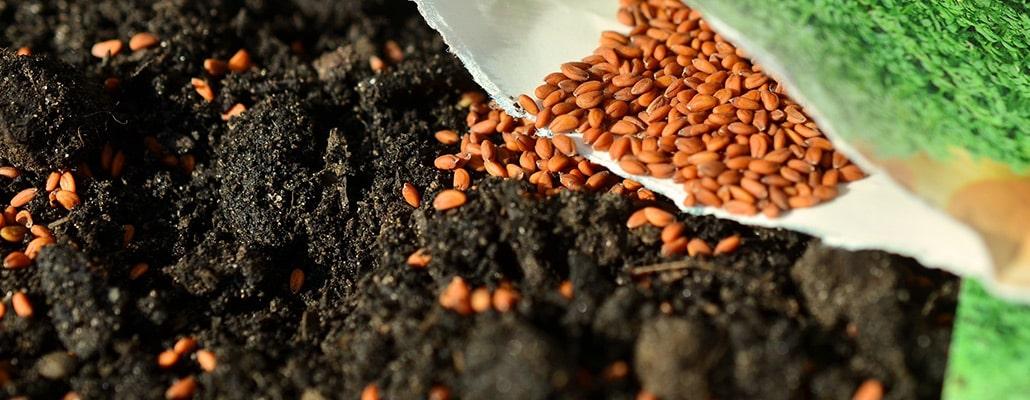 Fabriquez vos sachets de graines