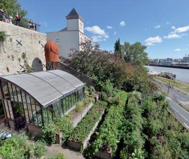 Nantes, ville nourricière | 4 saisons n°246 5