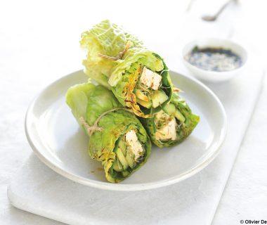 Wrap végétarien aux feuilles de chou et d'épinard 1